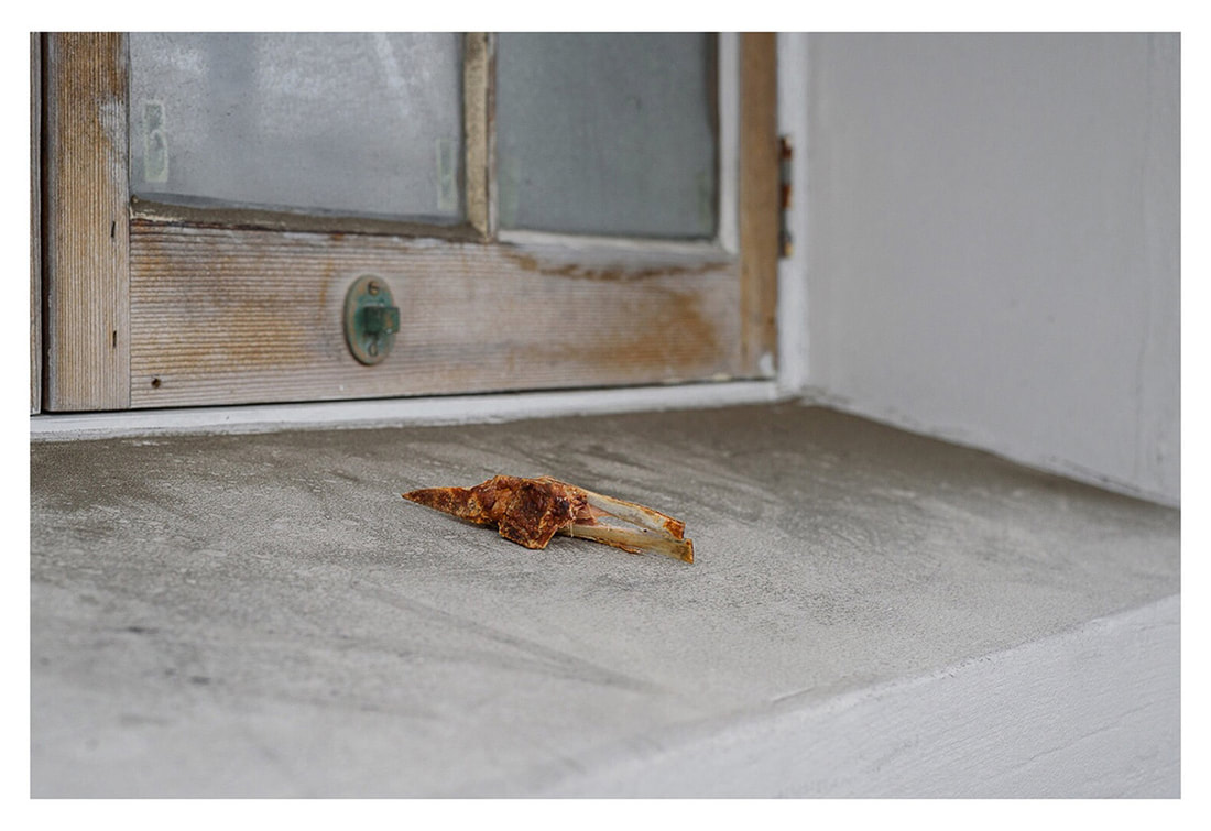 Peter Black - untitled 19, April 2020, A Month of Sundays - Responses to the Covid-19 Lockdown' online exhibition at PhotospaceGallery.nz, photography during covid-19 lockdown in New Zealand, meat on window sill